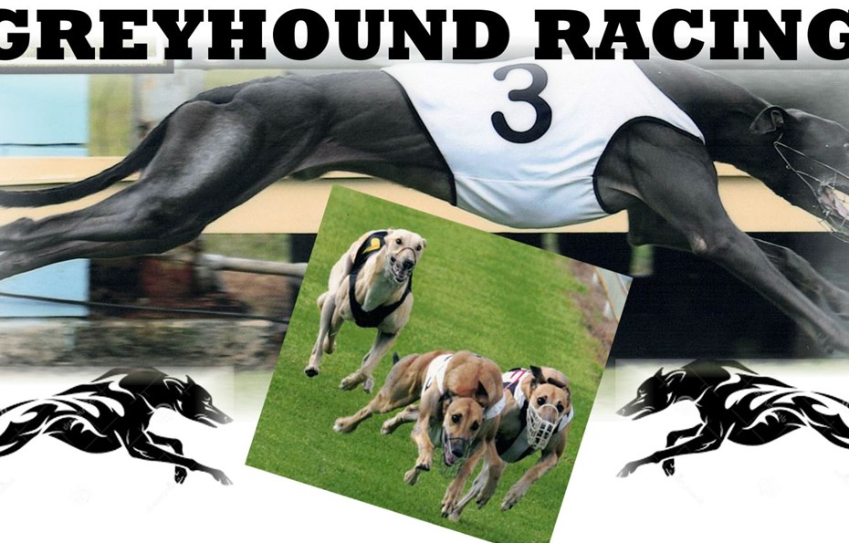 Bundy Greyhounds Closed to the General Public